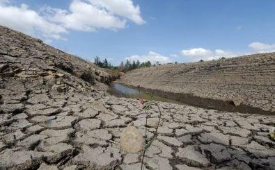Der Klimawandel wird zum immer ernst zu nehmenden Problem. Bild: Orlando Sierra / AFP