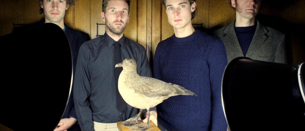 Der Vogel im Fokus – Stornoway experimentieren mit Vogelstimmen. Foto: PR