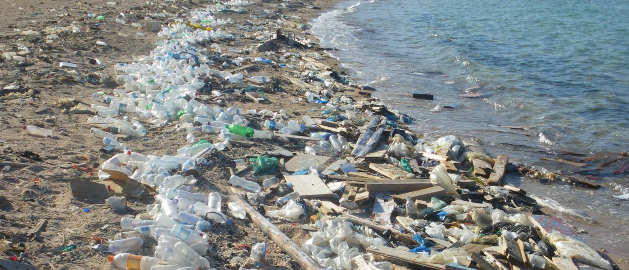 Grober Plastikmüll am Ufer des Roten Meeres (nahe Safaga, Ägypten)