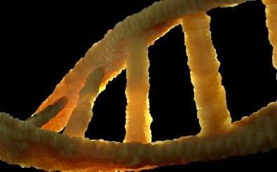 Hier setzt das Genome Editing an: ein DNA-Strang in der Nahaufnahme. Foto: CC0 1.0 | colin00b | pixabay.com