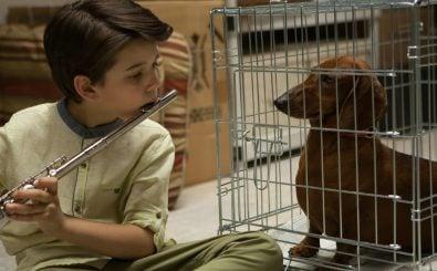 Wiener Dog © 2016 PROKINO Filmverleih GmbH
