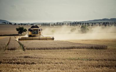 Monsanto und Bayer forschen zum Saatgut. Foto: Der Erntekapitän | CC BY 2.0 | Marcus Pink / flickr.com