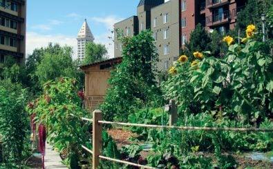Eine Oase zwischen den Blocks: ein Urban-Gardening-Projekt. Foto: Urban Garden | CC BY 2.0 | Seattle Parks / flickr.com
