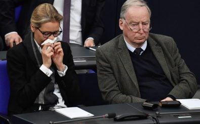 Alice Weidel und Alexander Gauland sind sich in der Frage um eine parteinahe Stiftung uneinig. Foto: John MacDougall | AFP