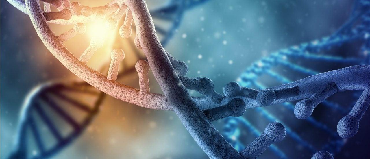 In der Genomforschung gibt es gravierende Ungleichheiten, wenn es um die registrierten Genome verschiedener Bevölkerungsgruppen geht. Foto: ESB Professional | shutterstock.com