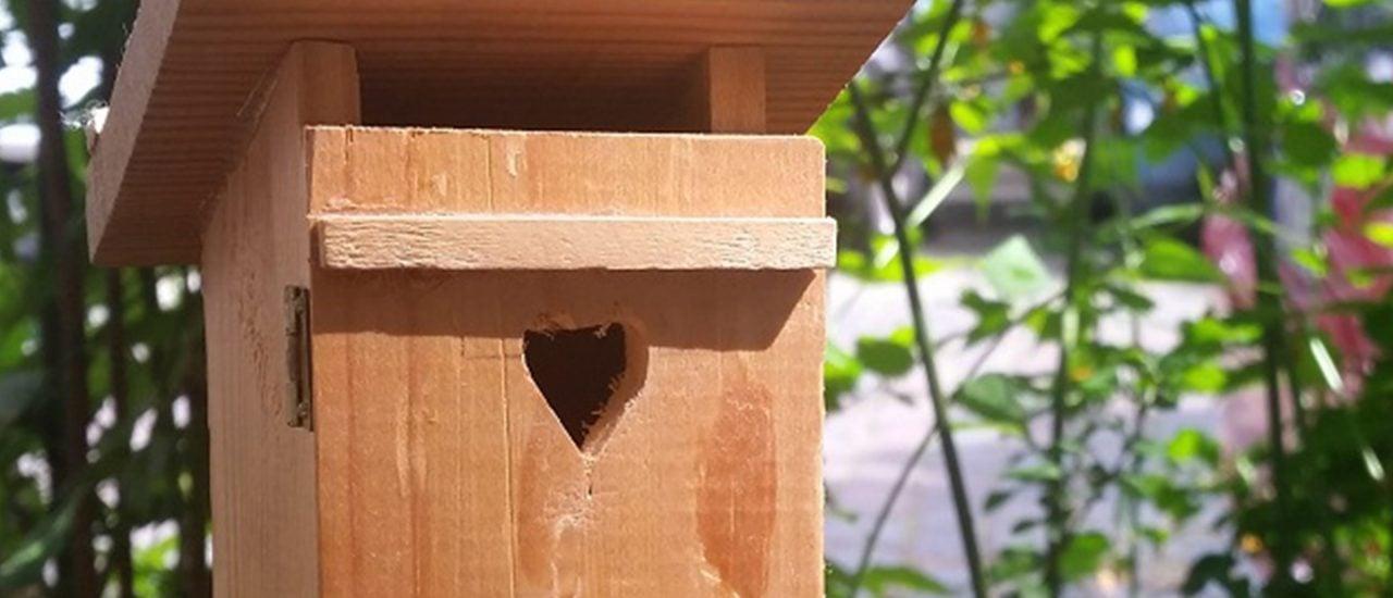 Ein Klohäuschen im Garten. Foto: Heike Sicconi | gartenradio.fm