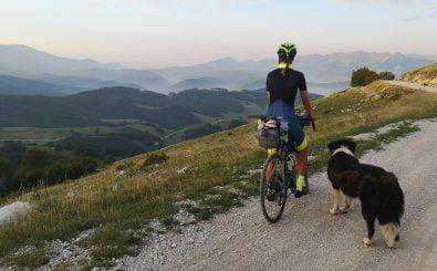 Treuer Begleiter in Bosnien: Ein Hund mischt sich ins Transcontinental Race. Foto: Johanna Jahnke | @johanna_jahnke