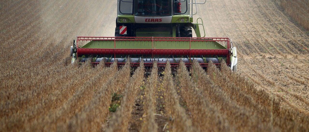 Nachhaltige Landwirtschaft profitiert oft von der Kraft der Gemeinschaft. Foto: Tolga Akmen | AFP