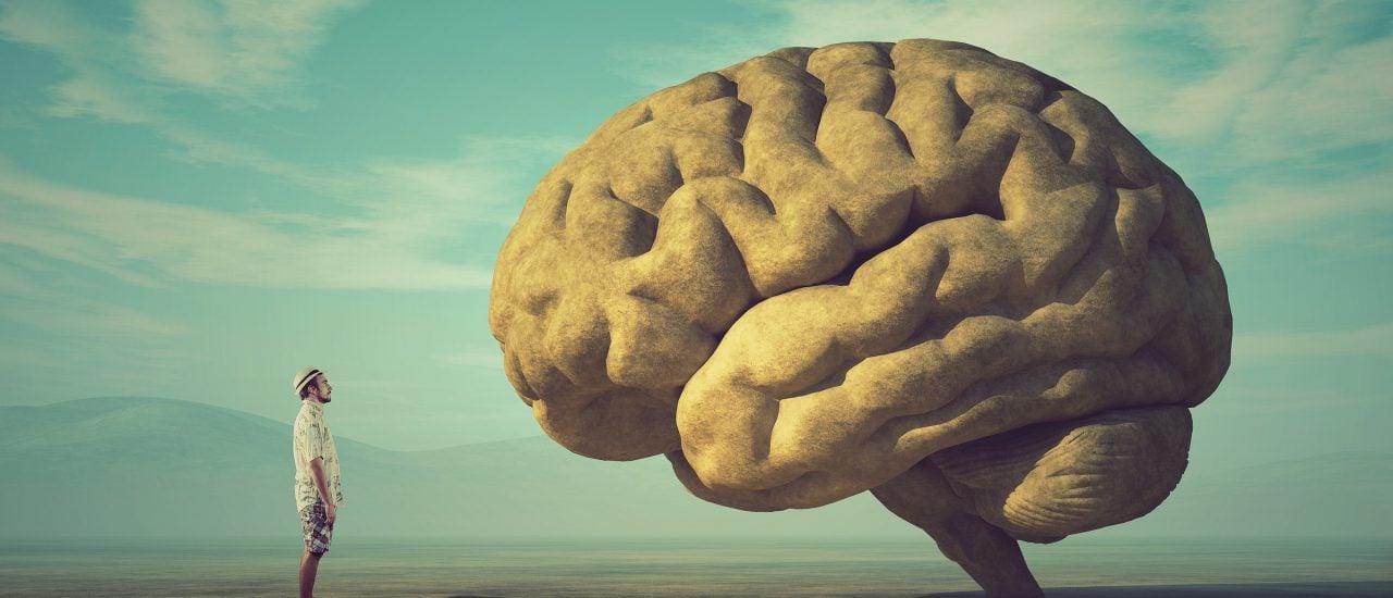 Unser Gehirn wird immer weiter erforscht. Manche Rätsel bleiben aber nach wie vor offen. Bild: Orla | Shutterstock.com