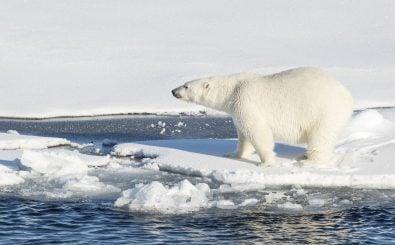 Kann der Kapitalismus das Klima retten? Oder brauchen wir einen Systemwechsel? Foto: CORY J. MENDENHALL | US COAST GUARD – AFP