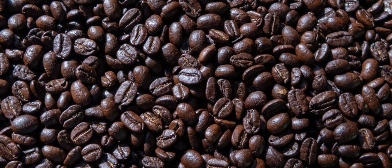 So kommt der Kaffee von Café Chavalo nicht nach Deutschland. Er wird nämlich ungeröstet transportiert. Foto: Nautilus 23 | shutterstock.com