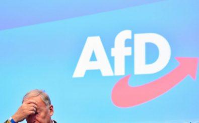 Miese Stimmung bei Alexander Gauland: In der AfD ist ein öffentlicher Streit um Björn Höcke und seine Positionen ausgebrochen. Kommt es nun zur Spaltung der Partei? Foto: Tobias Schwarz | AFP