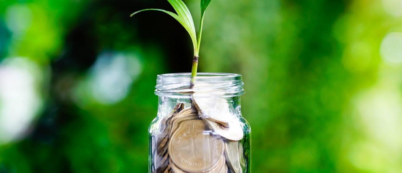 Nur wenige Banken bieten klimafreundliches Banking an. Facing Finance arbeitet daran, dass es mehr werden. Foto: Sopha Changaroon | shutterstock.com