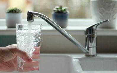 Stiftung Warentest hat 78 Mineralwassersorten untersucht. Foto: jlwphotography | Shutterstock.com