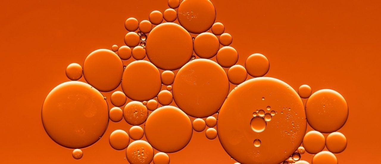 Was braucht eine Zelle zum Leben? Foto: Sharon Pittaway | Unsplash