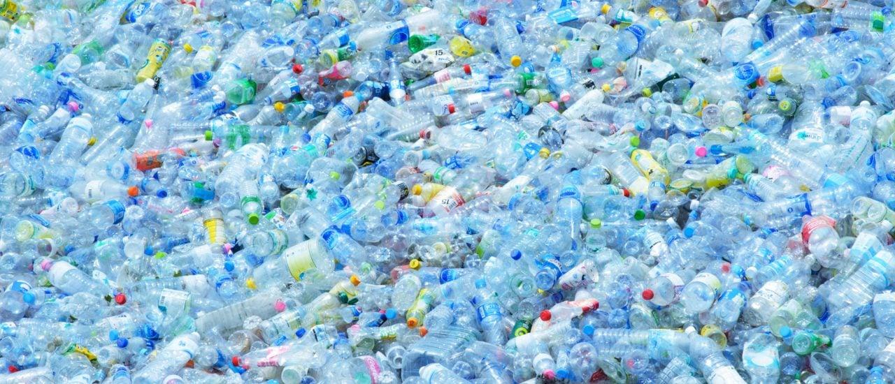 Plastikabfall kann lebensmitteltauglich recycelt werden, zum Beispiel für Getränkeflaschen. Foto: O. Hishiapply | shutterstock