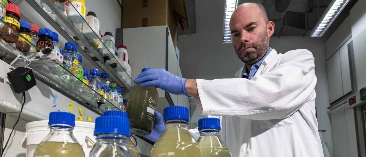 Virologe René Kallies im Labor